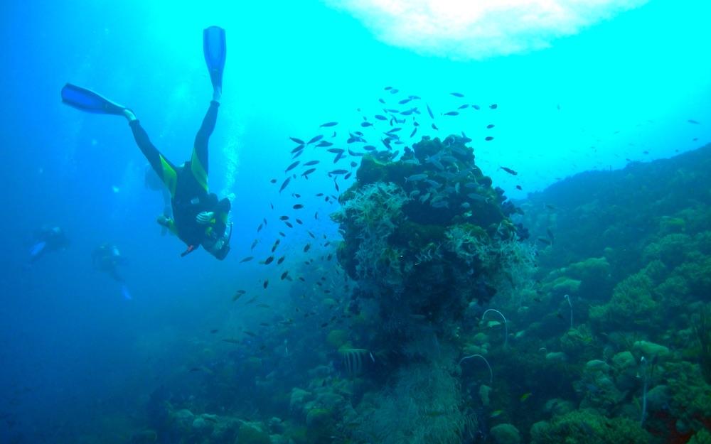 Spain's scuba diving hotspot, ScubaSur