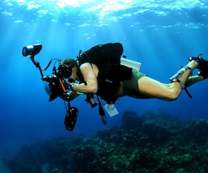Take diving photos like the pros with PADI Underwater Photography Speciality