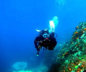 Dive longer, dive further across the Costa Tropical with PADI Enriched Air (Nitrox)