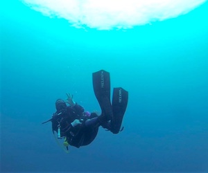 Refresh your scuba skill and dive at your best in Almuñécar with PADI Reactivate